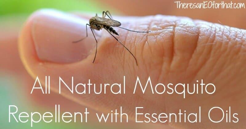 natural bug repellent recipe