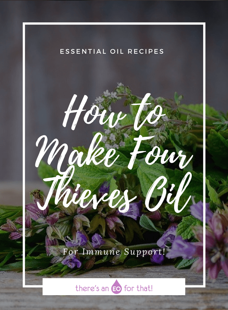 How to Make Four Thieves Oil - This fabled blend will keep you well all season long and has many uses in the home!