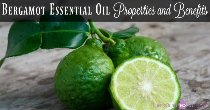 Bergamot Essential Oil Properties and Benefits