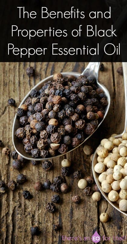 The Benefits and Properties of Black Pepper Essential Oil