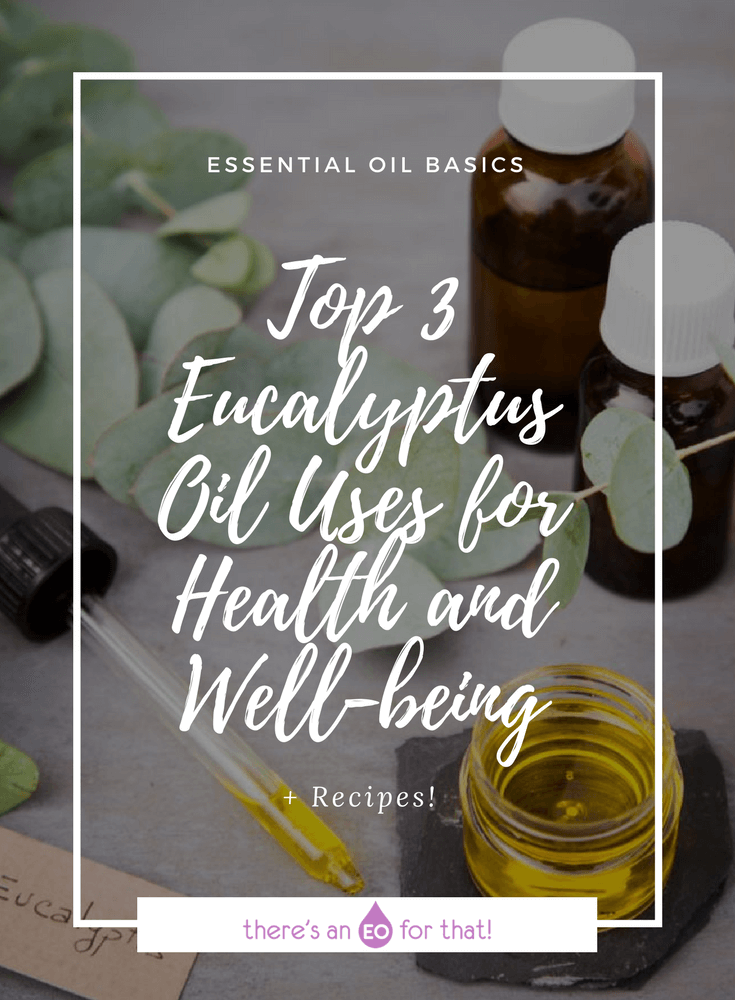Top 3 Eucalyptus Oil Uses for Health and Well-being - Learn about eucalyptus benefits and uses for cold and flu, sore throat, aches and pain, and caring for minor wounds.