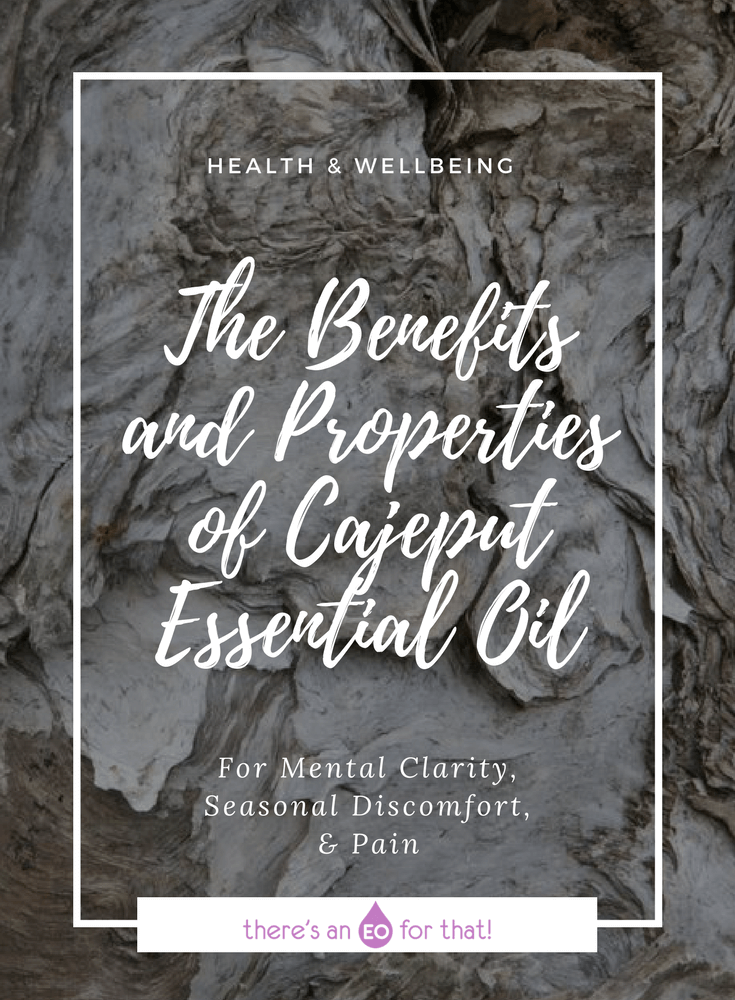 The Benefits and Properties of Cajeput Essential Oil - Cajeput essential oils has been used for respiratory ailments, aches and pains, and for mental clarity.