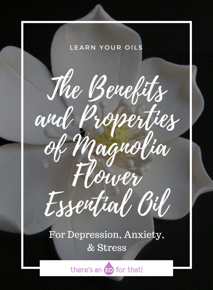 The Benefits and Properties of Magnolia Flower Essential Oil - Learn about this amazingly exotic essential oil that smells like fruity, floral champagne!