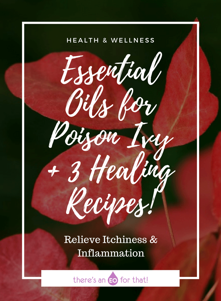 Essential Oils for Poison Ivy + 3 Healing Recipes! - Learn which essential oils are best for treating the symptoms of poison ivy like inflammation, itchy skin, and irritation and how to use them.
