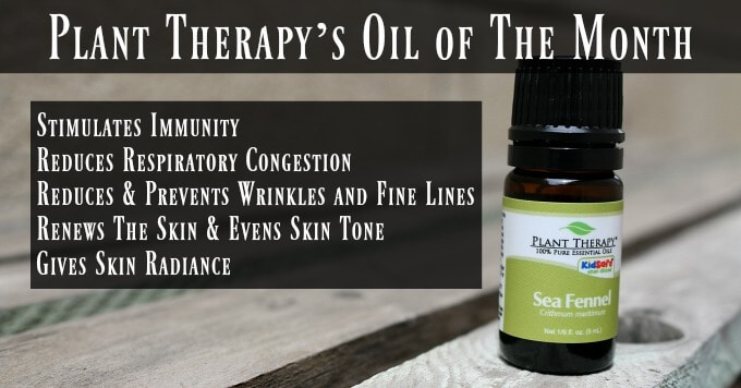 Plant Therapy's Oil of The Month – Sea Fennel