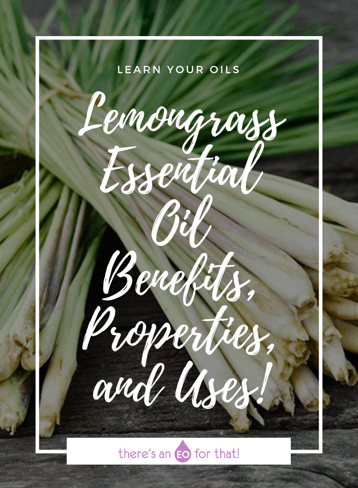 Lemongrass Essential Oil - Benefits, Properties, and Uses! - lemongrass is one of the most popular essential oils in the world and has been used for both its delicious flavor and therapeutic benefits for thousands of years.