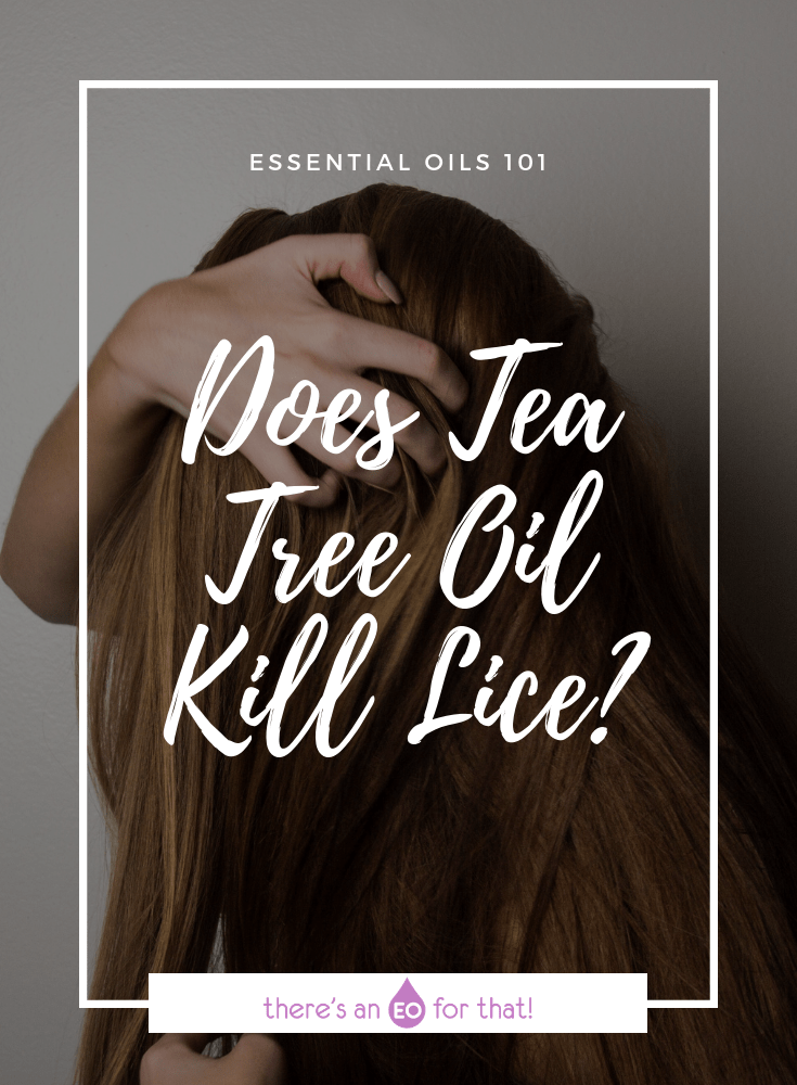 Does Tea Tree Oil Kill Lice - Tea tree essential oil is a powerful lice treatment. - photo of girl running fingers through her hair