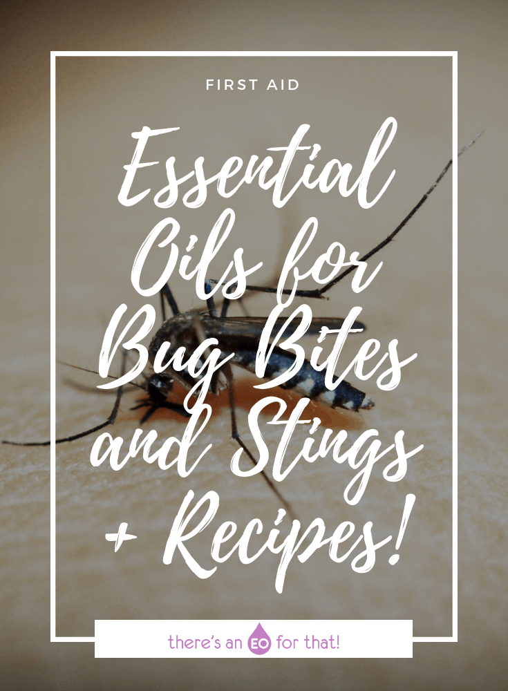 Essential Oils Good for Bug Bites and Stings