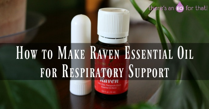 How to Make Raven Essential Oil for Respiratory Support